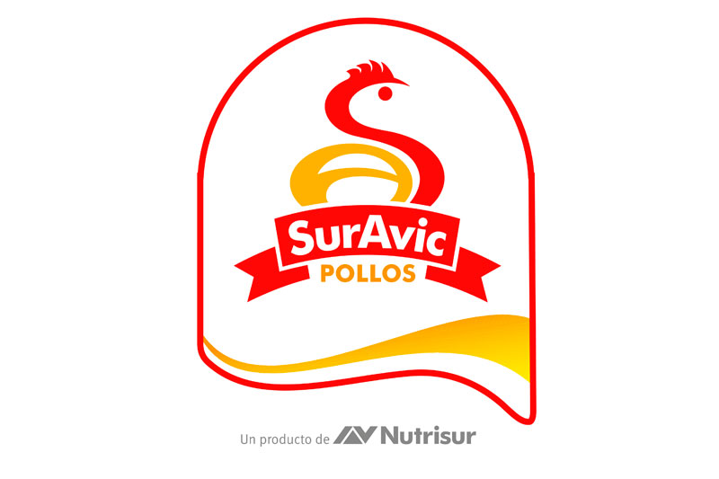 2001 – Nace SurAvic